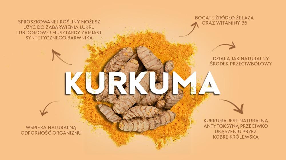 Kurkuma - superfoods